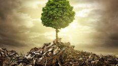 Neue Gewerbeabfallverordnung: Müll ist nicht gleich Müll!