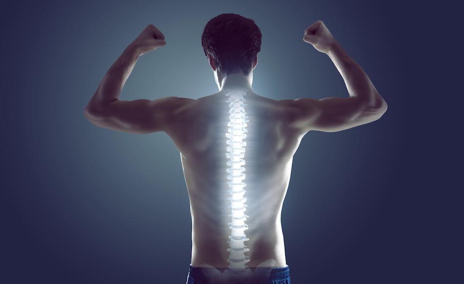 Please stand up: Für einen gesunden Rücken im Büro