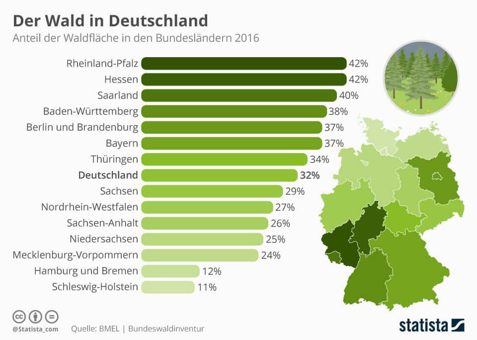infografik-wald-in-deutschland-forstwirtschaft