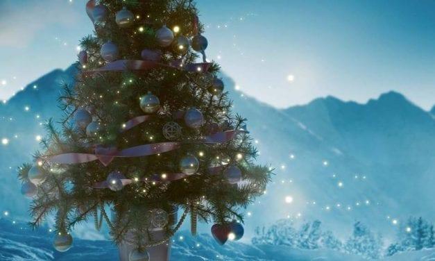 Geldanlage zu Weihnachten schenken: Die Zukunft unter dem Christbaum