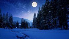 Winter Wonderland: 7 Städte für zauberhafte Weihnachten