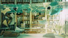 Deutsche Makler Akademie: Nachlass auf Online-Weiterbildung