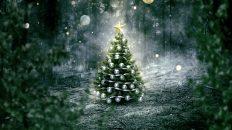 Im Geist der Weihnacht: Kunden rechtlich sicher beschenken